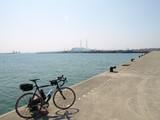 2008.3.3 AM11:50 興達漁港