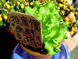 flowermarket (47)