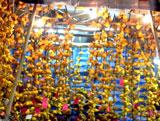 flowermarket (44)