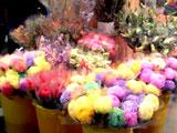 flowermarket (41)