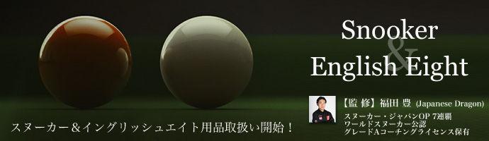 snooker-english8