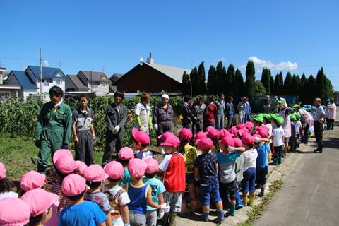 幕別幼稚園収穫 (3)ブログ