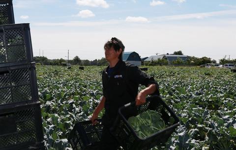 純農BOY記事投稿(6月 いしかり成田和広写真②)
