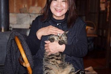 山猫軒2猫Mちゃん (375x251)