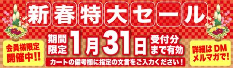 202101_sale1024x300