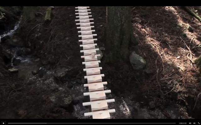 201500809-森の木琴-ドコモ-touch-wood-03