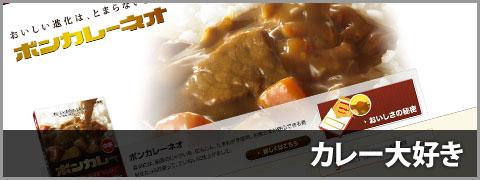 20111014-カレーとタワシ-00