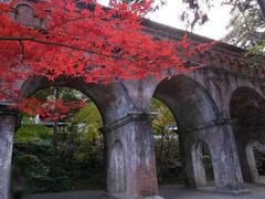 京都便利屋が撮影した南禅寺の紅葉1