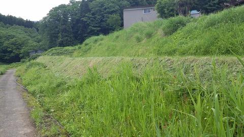 草刈り急ピッチ