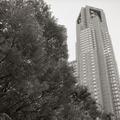 260406_中央公園-08