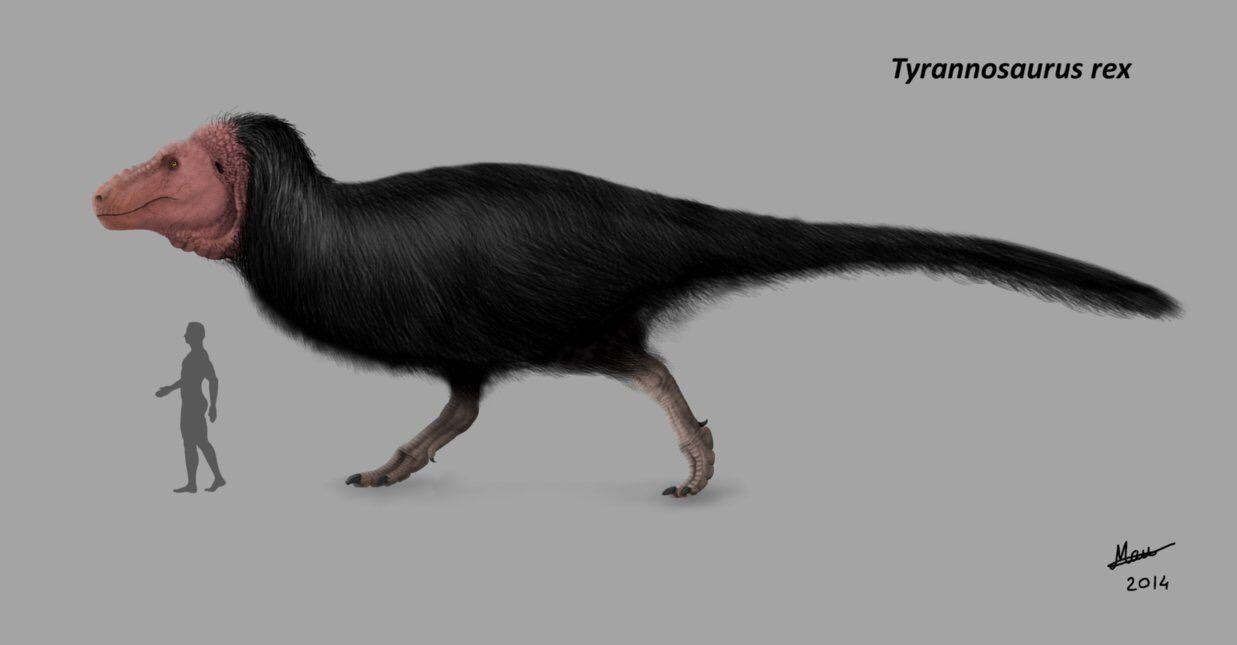 暴君竜ティラノサウルスの新しい...