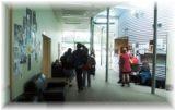 ニュージーランドの学校生活と日本語教師体験留学