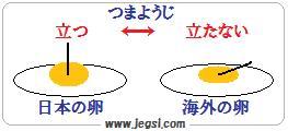 TKG 海外 日本の卵
