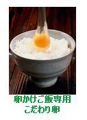 TKG 卵かけご飯専用卵