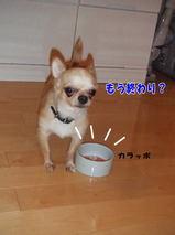 もう食べたの?!