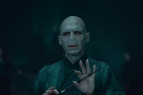 harry-potter-ralph-fiennes-voldemort-actors-1660153-480x320