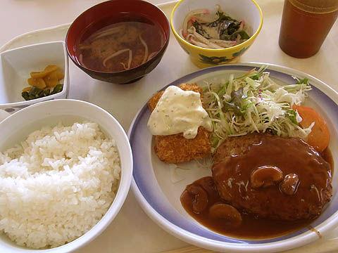9_food06