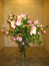 5月の生花