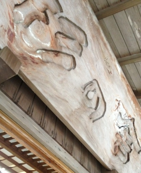 屋久島 杉の舎看板