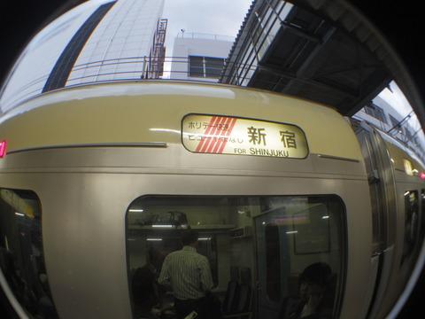 IMGP3336