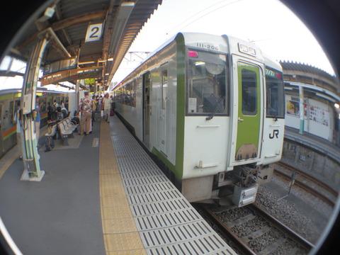 IMGP4561
