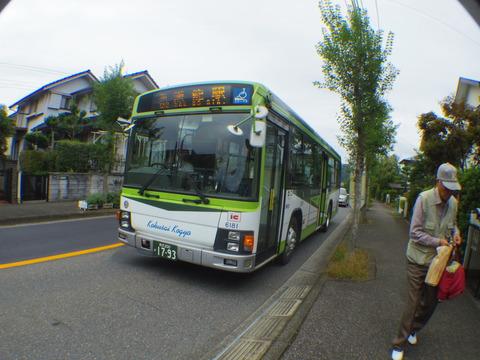 IMGP9939