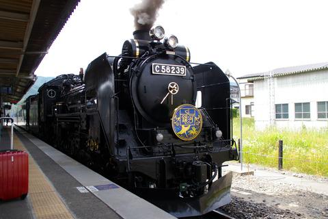 IMGP4658a