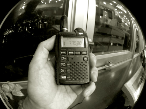 IMGP5553a