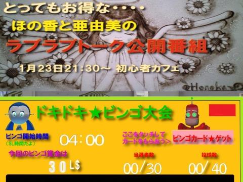 HONOKA-0123_001