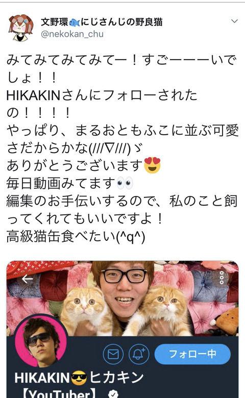 【にじさんじ】たまちゃん(野良猫)がHIKAKINにTwitterフォローされる!
