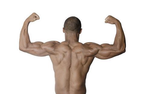 【悲報】最近ジム通い始めたんだけど、胸筋鍛えようとしても腕が限界になるんだけど