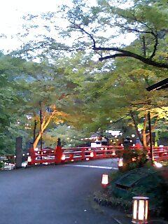【OSUツーリング1】ライトアップ橋