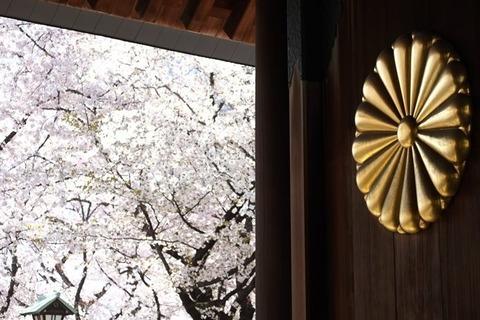 yasukuni-jinja-sakura-680x453