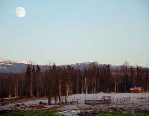 昼間の満月