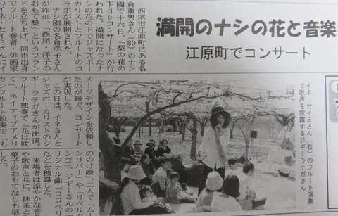 梨のお花の下deコンサートの記事