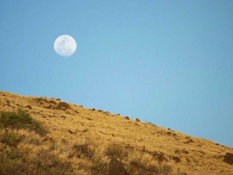 月と太陽に関する嘘 の証拠;新月と満月の昼間
