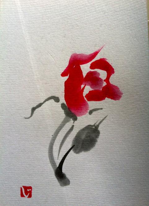 Wild rose 野薔薇