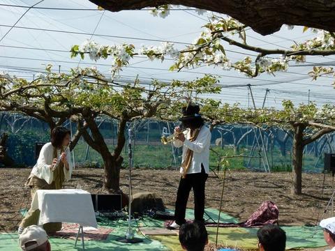 梨のお花の下 de コンサート