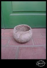 流木鉢ベージュ