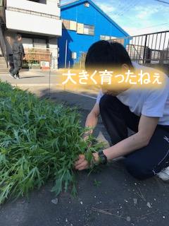 IMG_6819 (1)