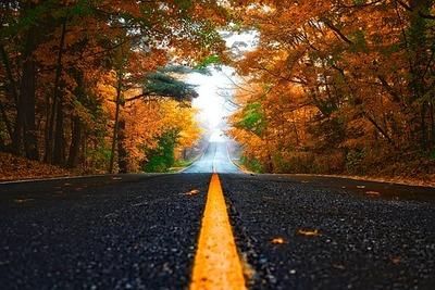 autumn-1758194__340