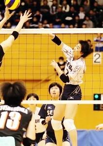 20171124-seiwa