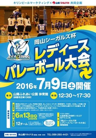20160709seagullscup