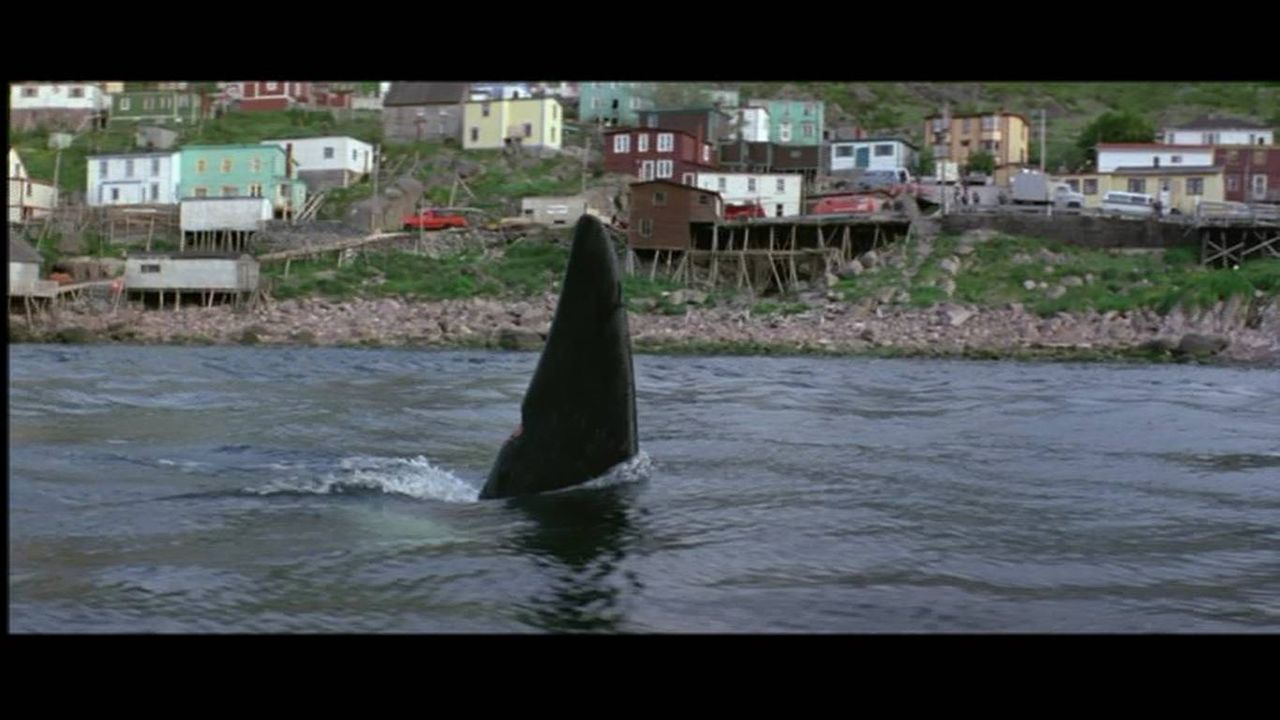 燃えよ!映画論 : オルカ 「白鯨」→「イルカの日 ...
