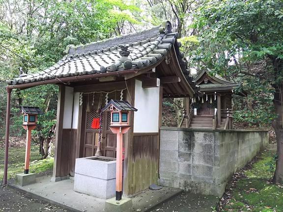春日神社 中門と本殿