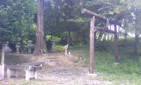 棚機神社 鳥居と神木