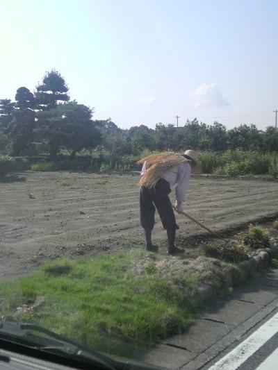 29農作業