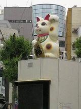 M CAT