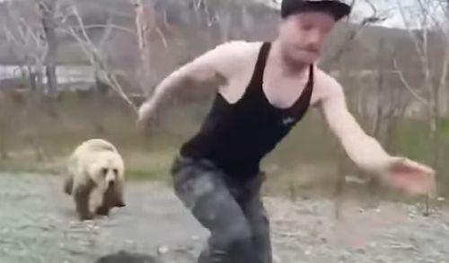 野生 クマ 小熊 背中に関連した画像-04