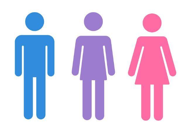ドイツ 第三の性 ディバース 公式 認めるに関連した画像-01